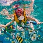 cozumel-snorkel
