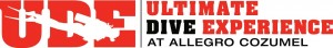 UDE Logo - Copy