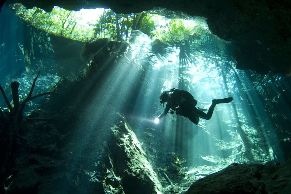 cenote-signature-dive-pro-dive-international-mexico