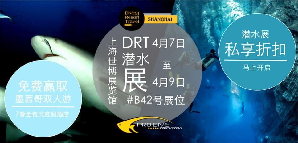 cover-drt-shanghai-pro-dive-international