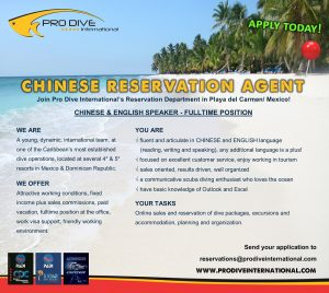job-alert-reservation-agent-chinese