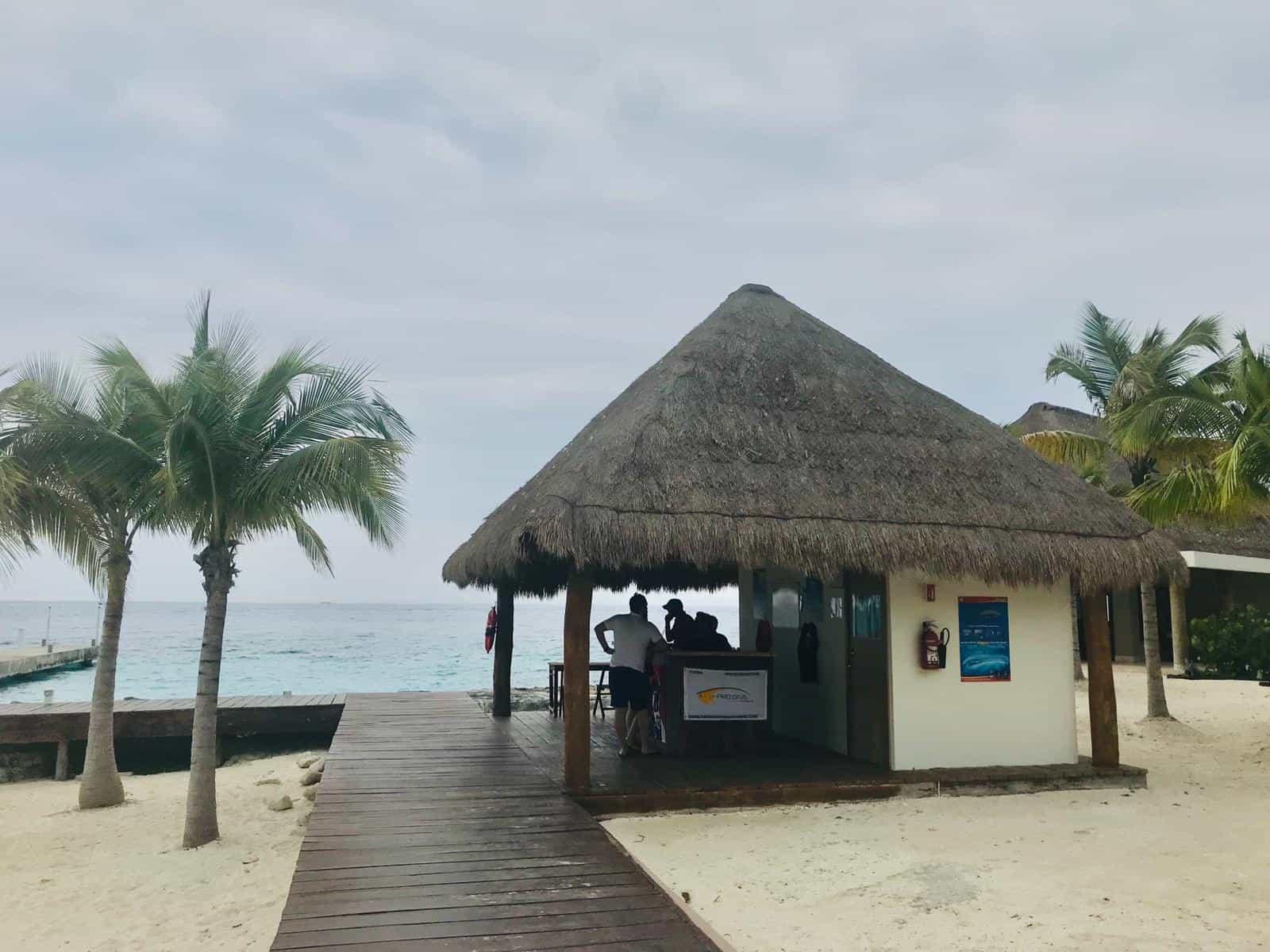 Cozumel Dive Shop at The Westin Cozumel   Pro Dive International