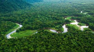 Amazon River
